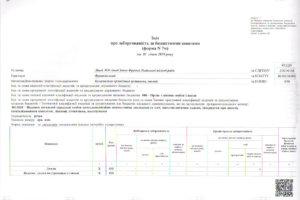 borg-budget01